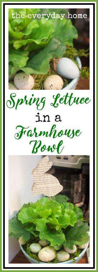 Spring Lettuce in a Farmhouse Bowl   The Everyday Home   www.everydayhomeblog.com