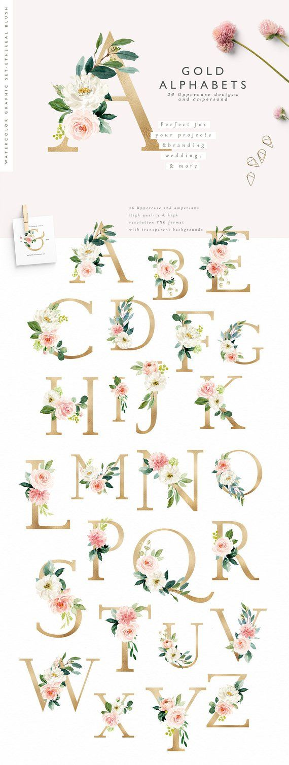 Blush florals-Gold/Individual PNG files/Hand Painted/Wedding design/Romantic/Ampersand/