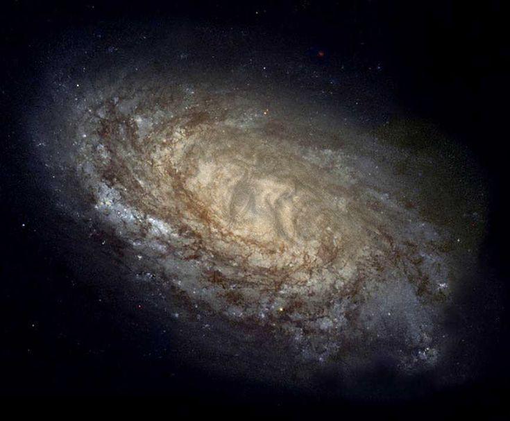 Экология познания. Наука и открытия: Одним из краеугольных камней современной астрофизики является космологический принцип. Согласно нему, наблюдатели на Земле видят то же самое, что наблюдатели из любой другой точки Вселенной, и что законы физики везде одинаковы.
