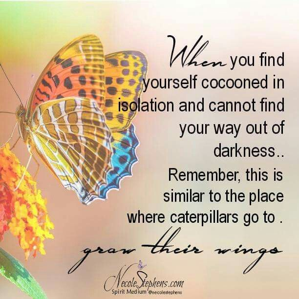 Tattoo Quotes Butterfly: Best 25+ Butterfly Sayings Ideas On Pinterest