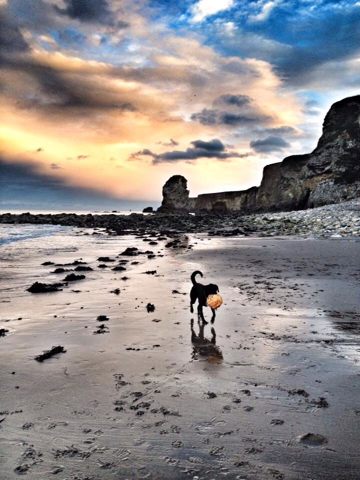 Marsden Bay, South Shields South Tyneside.