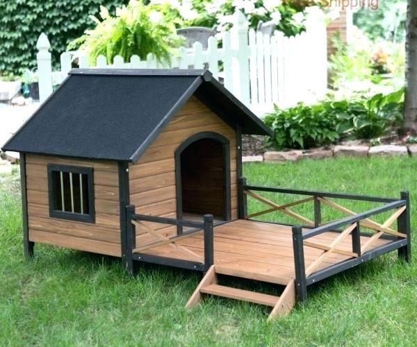Igloo Dog House Walmart Dog House Medium Size Of Extraordinary Dog
