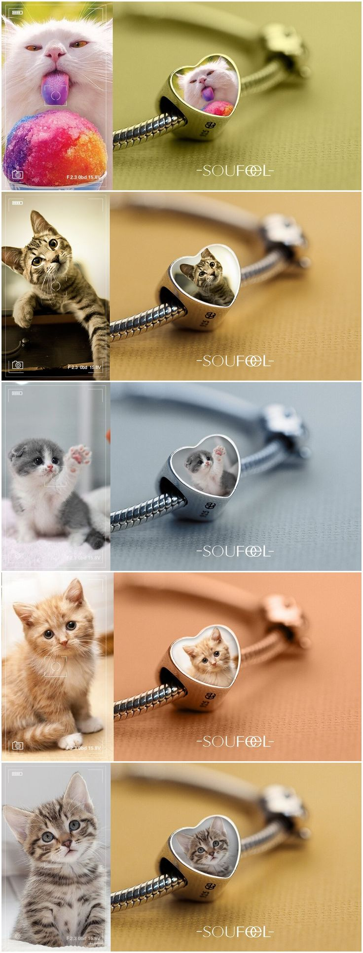 Get a charm bracelet with your kitty's photo in it! Lovely ideas of pet photography!