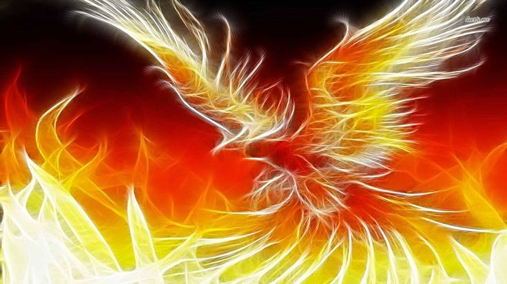 1366x768 wallpaper desktop phoenix