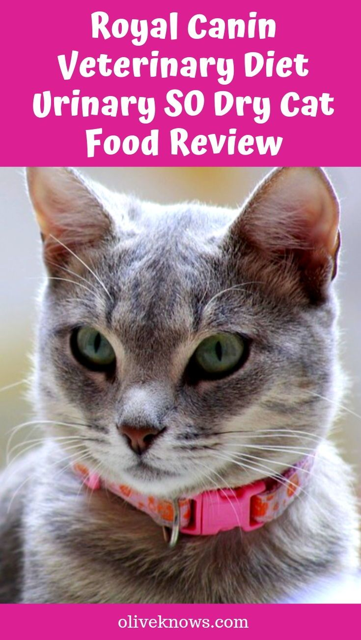 Royal Canin Veterinary Diet Urinary SO Dry Cat Food Review