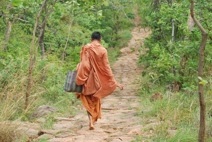 Hvad enten du er dedikeret yogaudøver eller det er en helt ny verden for dig, så har vi alle brug for en pause, hvor vi kan koble fra dagligdagens gøremål og investere i selvkærlighed. Dette retreat vil give dig en kærlig pause, hvor du har fokus på at gø