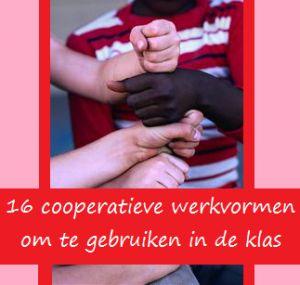 Cooperatief leren