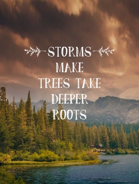 Storms make trees take deeper roots - Typography Picture Quotes @mobile9 | #motivational #inspirational #advice