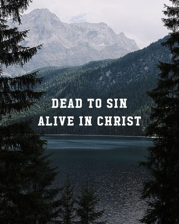 For we know that since Christ was raised from the dead he cannot die again; death no longer has mastery over him. The death he died he died to sin once for all; but the life he lives he lives to God. In the same way count yourselves dead to sin but alive to God in Christ Jesus. - Romans 6:9-11  This phrase is a reminder of how we should live our lives: dead to sin but alive in Christ! We must no longer be slaves to the darkness and sin in our world but look toward our eternal life with God!