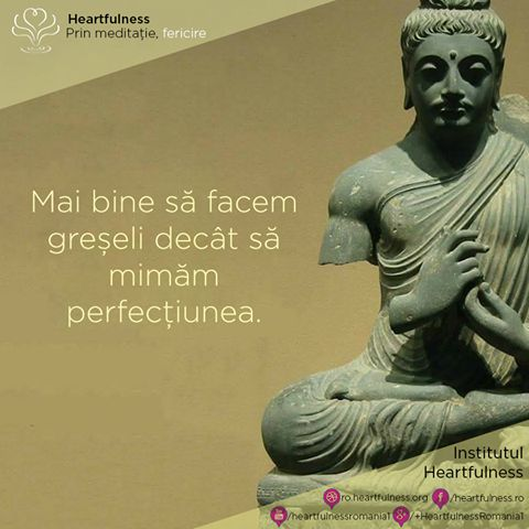 Mai bine să facem greșeli decât să mimăm perfecțiunea. #heartfulness #cunoaste_cu_inima #hfnro Heartfulness România - Google+