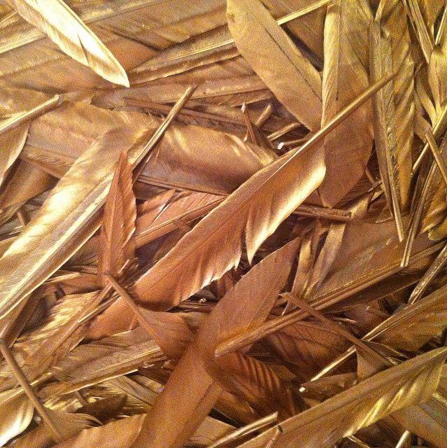 GOLD FEATHERS  |  via: Pearl-Nautilus.tumblr.com