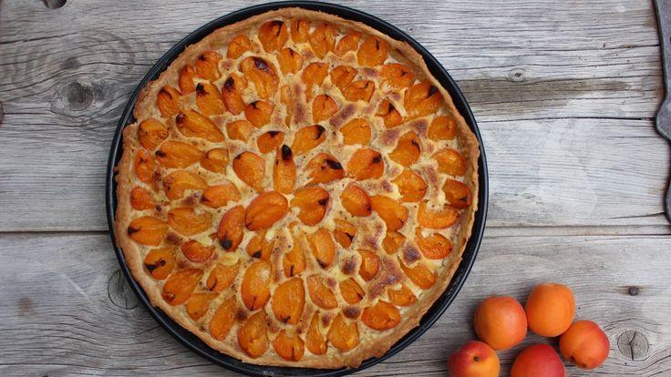 Aprikosenwähe im Blech