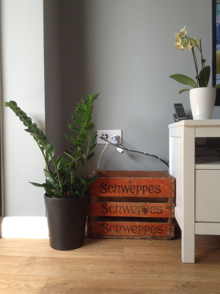 Vintage Schweppes crate, with Farrow and Ball Manor House Grey