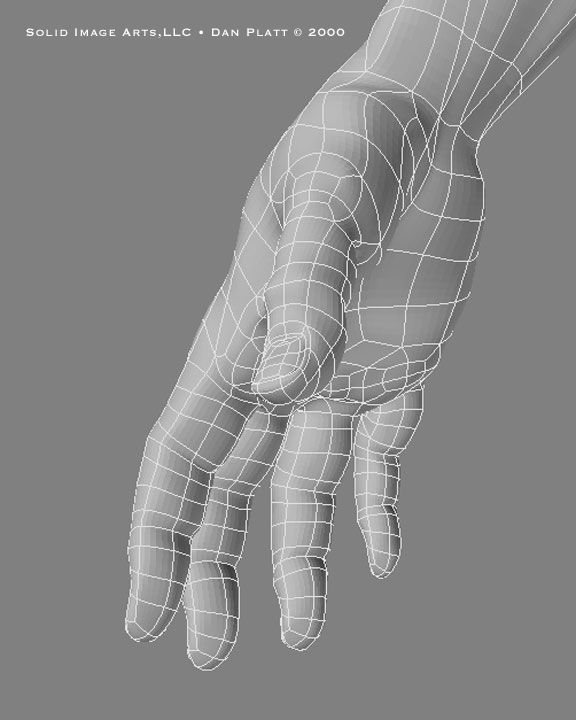 Hand wireframe from the side