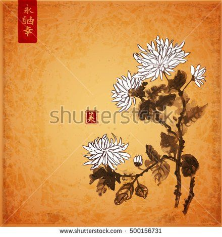Chrysanthemum flowers on vintage background. Traditional oriental ink painting sumi-e, u-sin, go-hua. Contains hieroglyphs - eternity, freedom, happiness, beauty
