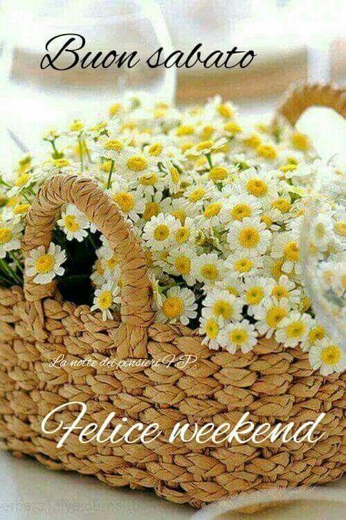 buon sabato felice week-end