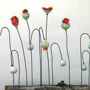 Picardie Poppies