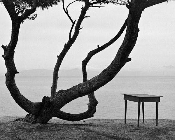 Εύβοια, 1962.φωτ.Δημήτρης Χαρισιάδης