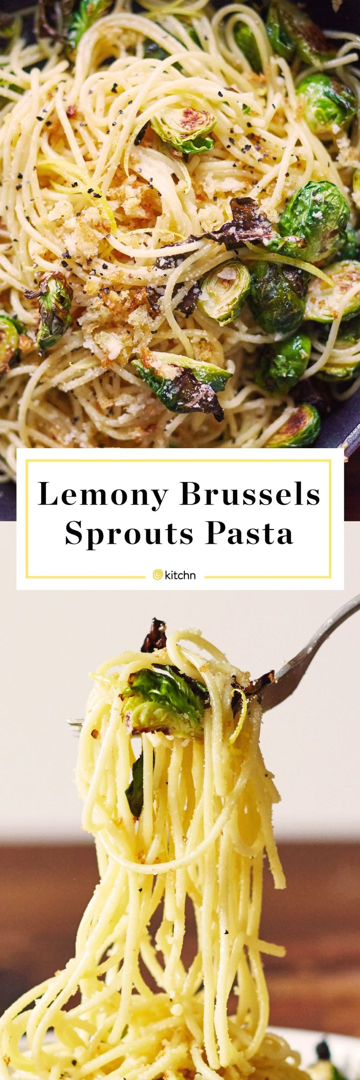 Lemon Brussels Sprouts and Breadcrumb Spaghetti Pasta Recipe. Looking for recipes and ideas for quick and easy weeknight meals and dinners? This vegetarian dish is a great way for families to eat some healthy veggies or vegetables. You'll need olive oil, bread crumbs, lemon zest and juice, brussels sprouts, garlic, red pepper flakes, white wine, parmesan cheese.
