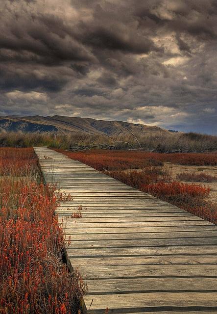 Vernon Lagoon Walkway, Marlborough, New Zealand