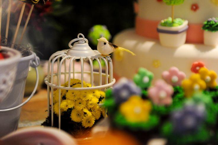 festa jardim secreto:Festa Jardim Secreto