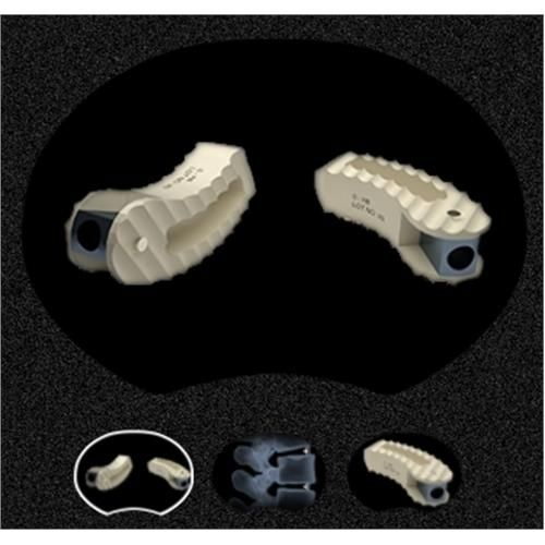 FIDES Transforaminal Posterior Lumbar Cage System - Thoracolumbar -  Teeth Implant