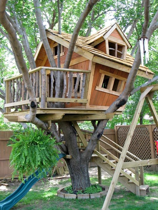 funky treehouse for the kids pinterest treehouse tree houses and tree house designs - Cool Kids Tree House