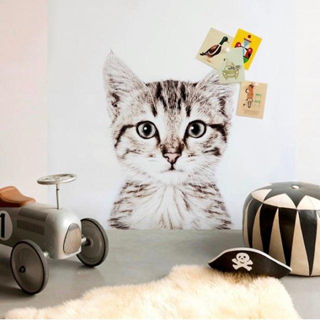 Magnetic wallpaper. Choose from kitten, parrot, bear and giraffe   DKK 699. Shop link in bio.  #studiominishop #groovymagnets #magneticwallpaper #kidsroom #kidsdecor #kidsinterior #børneværelse #børneinteriør #magnetisktapet