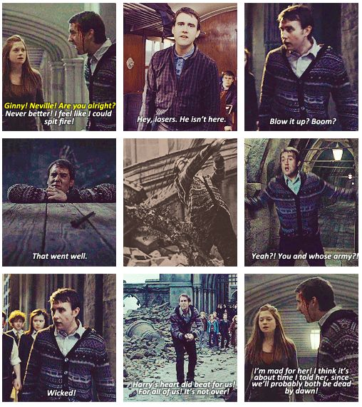 The best of Neville Longbottom...at least for the Deathly Hallows