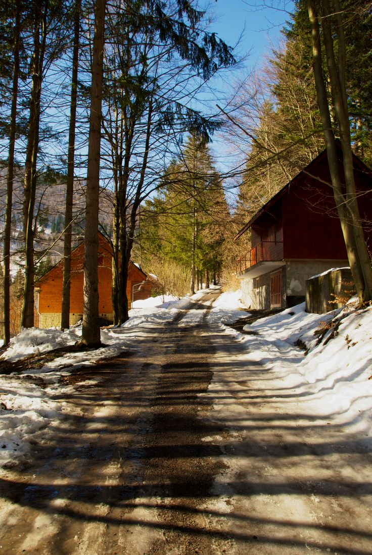 I took this beautiful picture in Terchova (Slovakia), February 2013.