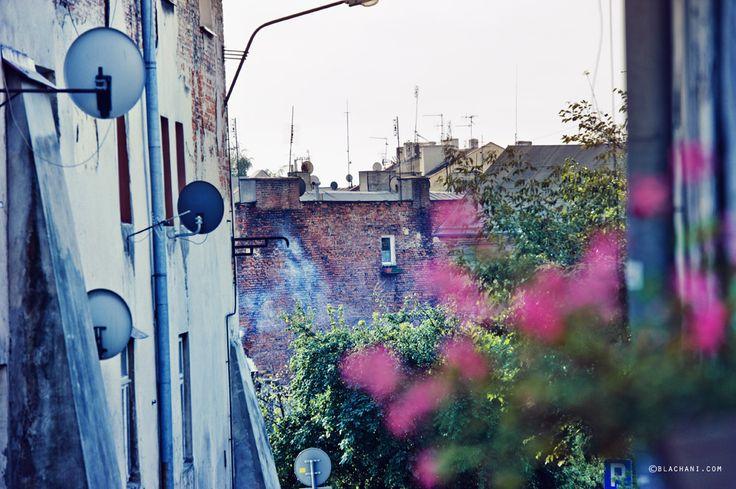 Żmigród #Lublin