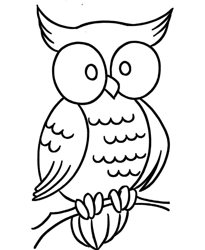 pre k coloring pages wise owl - K Coloring Sheets