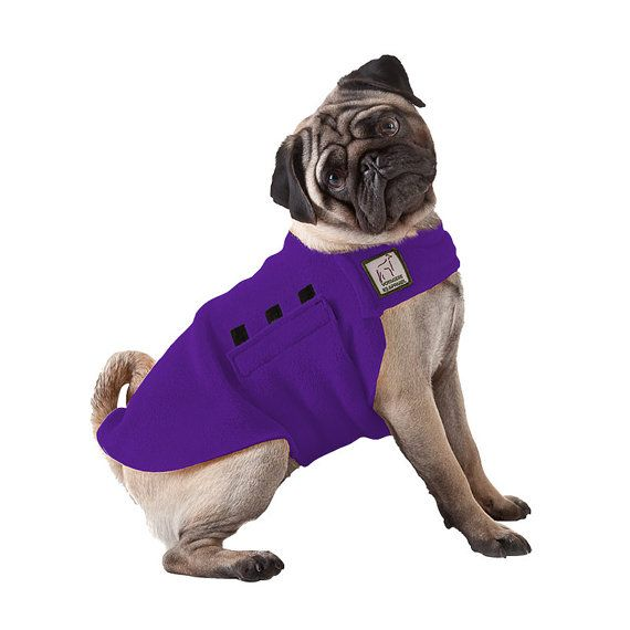 The 25 Best Fleece Dog Coat Ideas On Pinterest Dog