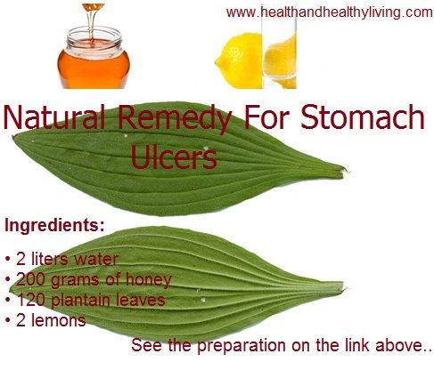 Plantago is amazing and very effective cure for stomach ulcers. Also is great for inflammation and intestines.  In the following link you will find a recipe for how to treat stomach ulcer by using plantain leaves. http://www.healthandhealthyliving.com/discovered-miracle-natural-cure-for-stomach-ulcers-with-incredible-efficiency/