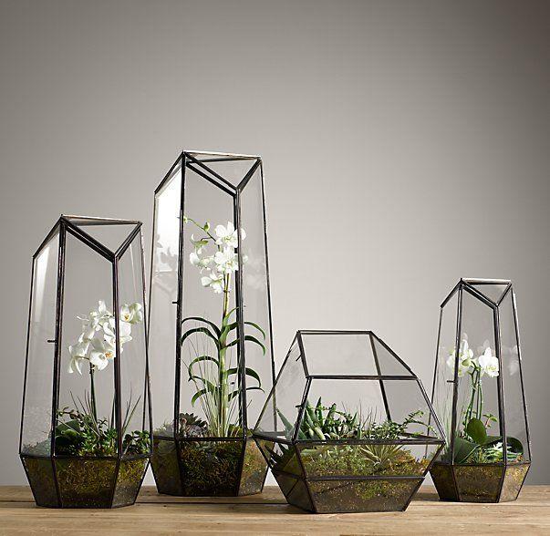 Faceted Glass Terrarium