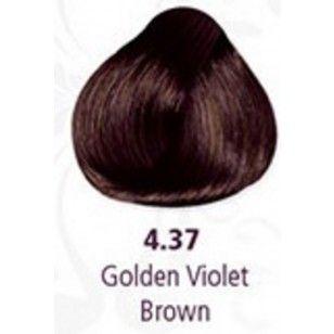 Pravana Hair Color 4.37 Golden Violet Brown- Bombshell Brunettes | Image Beauty
