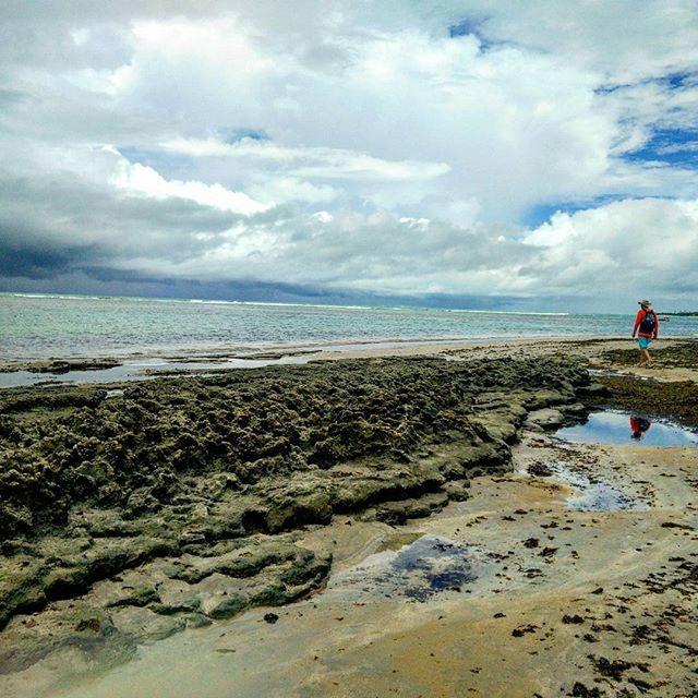 Praia de Porto de Galinhas na maré baixa. #Praia #portodegalinhas #MangueCast