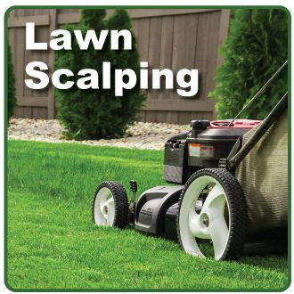 What is Scalping?  Scalping is cutting your Bermuda grass shorter than last year and bagging all of the mess. While scalping is not necessary for a healthy lawn, most lawn services do it for their …