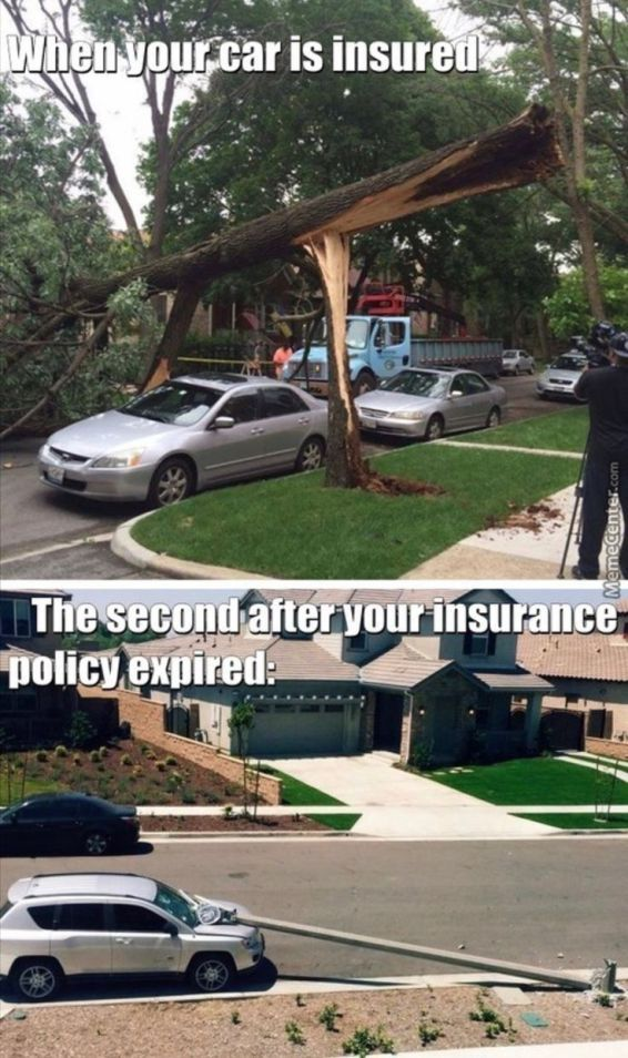 Car Auto Insurance Companies >> 13 Most Hilarious Car Insurance Memes That Will Set Your ...