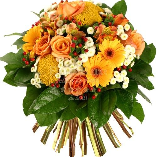 Order online and send her a hot surprise, anywhere she might be in Romania. Orange flowers to Romania with free delivery
