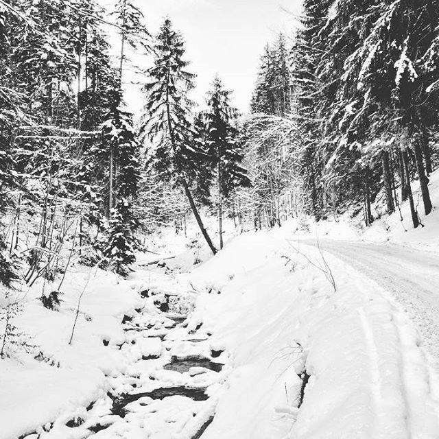 【krystian_pawlowski】さんのInstagramをピンしています。 《#stożek #wisła #poland #travel #moutains #snow #winter #river #forest #road #beskidy #polska #góry #polskiegóry #zima #śnieg #droga #rzeka  #ポーランド #旅行 #山地 #森 #道 #川 #冬 #雪》