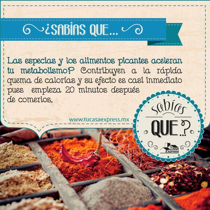 ¿Sabías que… las especias y los alimentos picantes aceleran tu metabolismo?