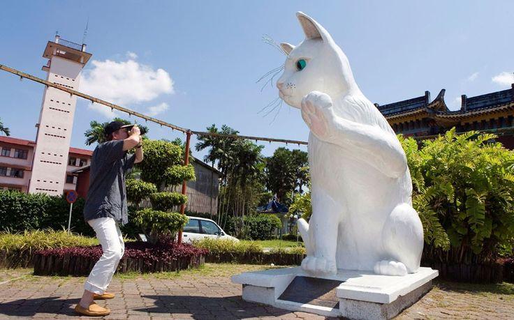 """Kuching, Malásia. Kuching significa literalmente """"cidade gato"""", e é o lar de dezenas de esculturas de felinos gigantes. Há também um museu que tem um gato de mil anos mumificado."""