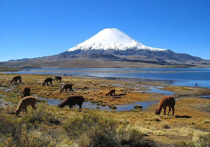 Parinacota volcano [Chile]