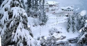 3 Nights Shimla Family Package