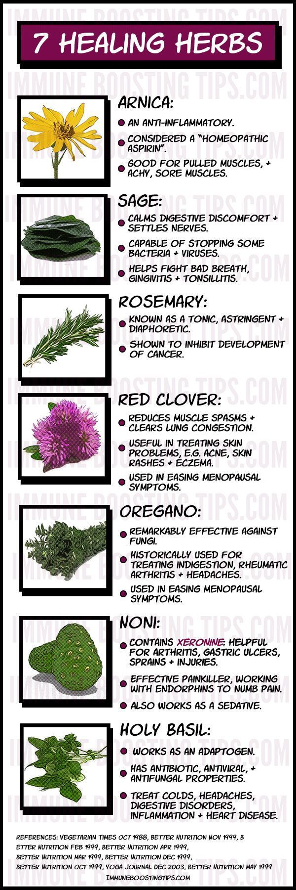 Medicinal Herbs for healing: some the best medicinal plants for healing and boosting immune system health.