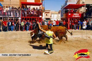 torodigital: Arrancan los festejos taurinos en honor a San Vic...