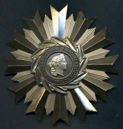 Звезда ордена Национальных заслуг