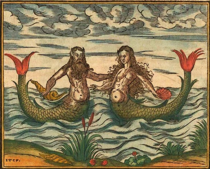 Mermaid and Merman (Sebastian Münster, Cosmographia, 1578)