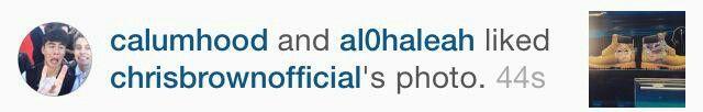 Calum liked Chris Brown's photo on IG